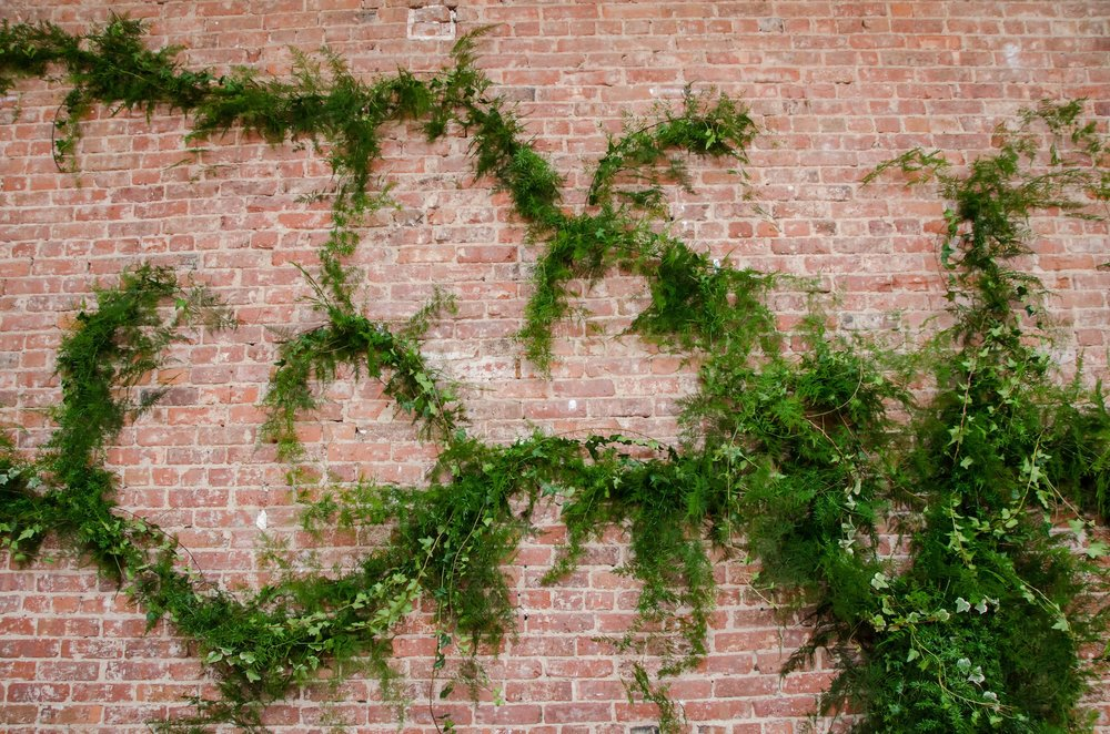 Flowing Greenery On Exposed Brick- B Floral