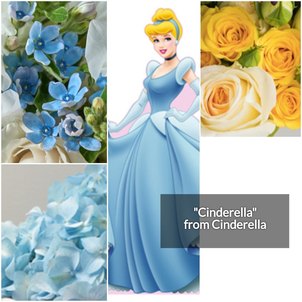 Cinderella Collage-min.jpg