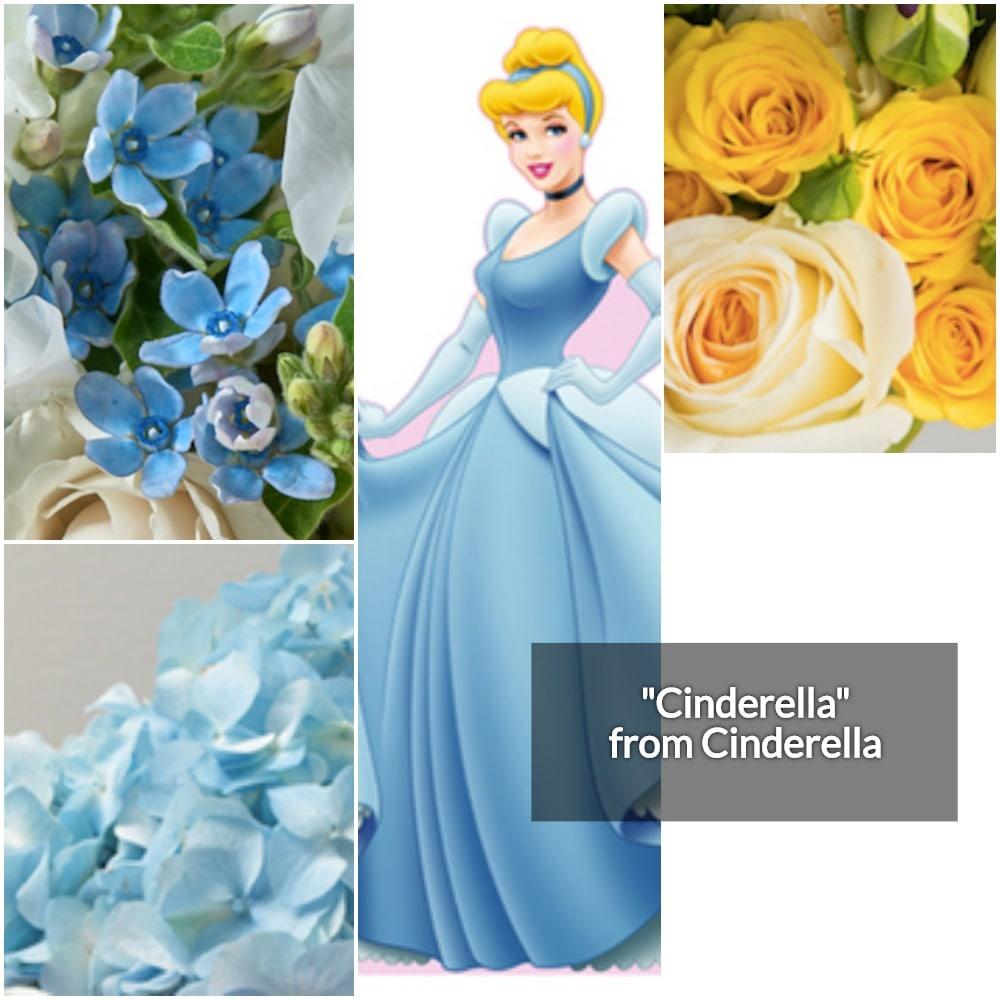 Cinderella Collage-min.jpg