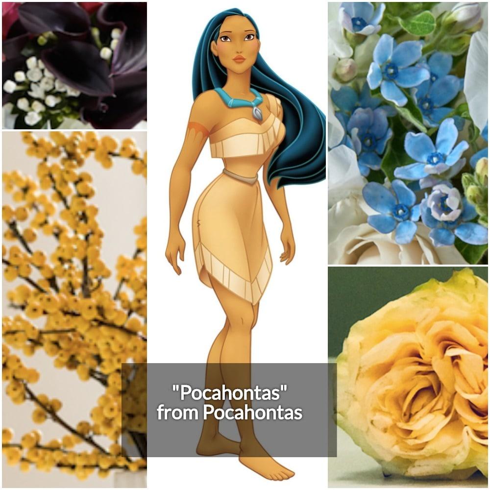 Pocahontas Collage 2-min.jpg