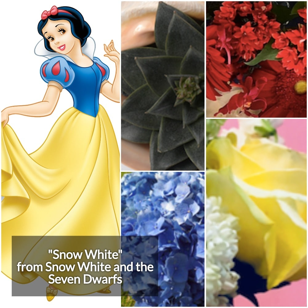 Snow White Collage 2-min.jpg