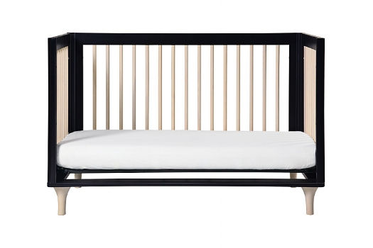 Lolly 3-in-1 Crib by Babyletto $399