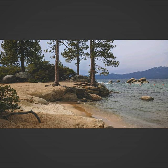 Painting, drinking, and hanging out with friends in the annual Tahoe trip. Good memories🍷🏞️🖌️