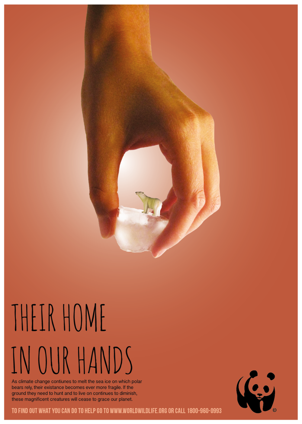 WWF Home in Our Handing_TMK Advertising Design