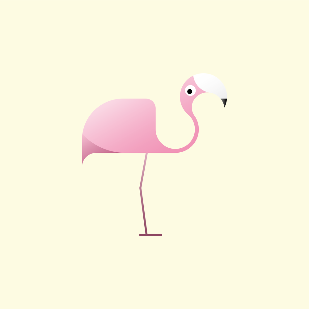 Flamingo_Birds_TMK Graphics_Illustration