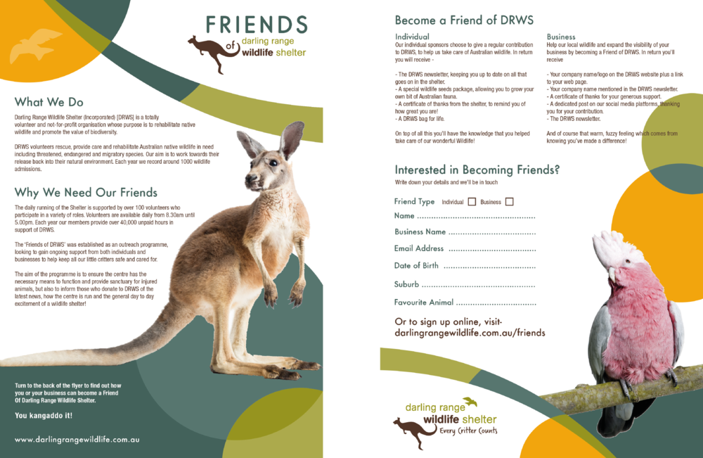 Flyer_Branding_Marketing_Wildlife Shelter_Darling Range