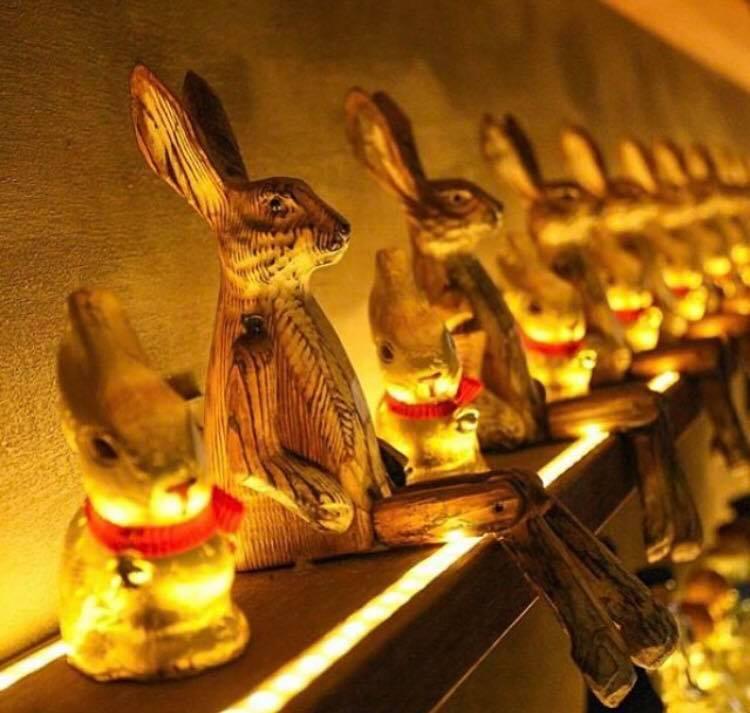 Elixir's famous bunnies