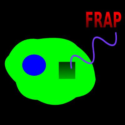 Nikon FRAP Protocol