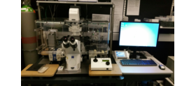 Equipment.    We host a broad range of systems, ranging from mesoscopes, microcsopes to super resolution.