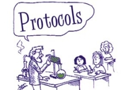 Protocols    Protocols used for imaging techniques