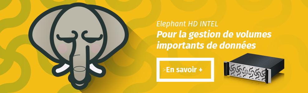 banner-elephant