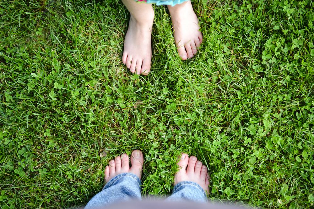 Grass ©2011,Heather Kapsoulis.