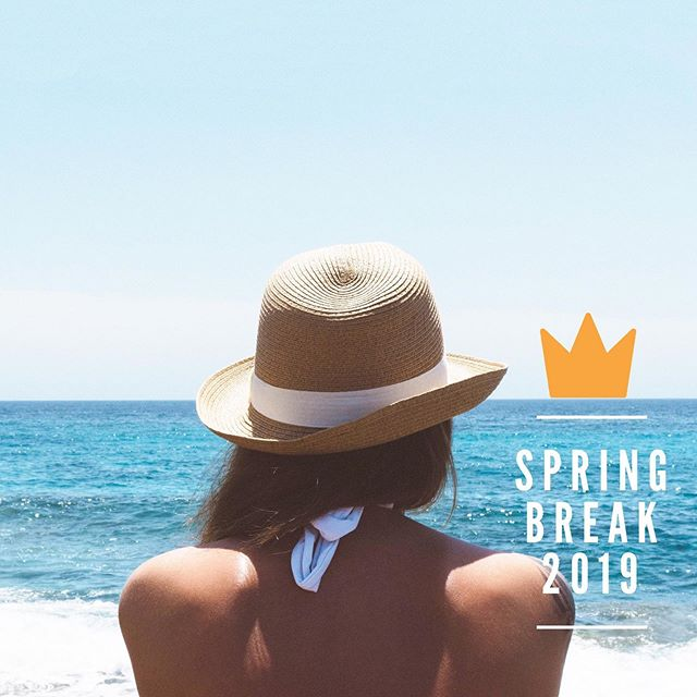 Raise your hand if you want to take a week in March to get away, go deep, find yourself, your confidence, your purpose in the world and the tribe that will support you along the journey (in paradise🌴)? . Join us on Spring Break! Link in bio👆🏼 . #springbreak2019 #womenempowerment #womenhelpingwomen #liveyourlegacyoutloud #entrepreneurship #femalefoundercollective #legacyoutloud #springbreakforthesoul #girlgang