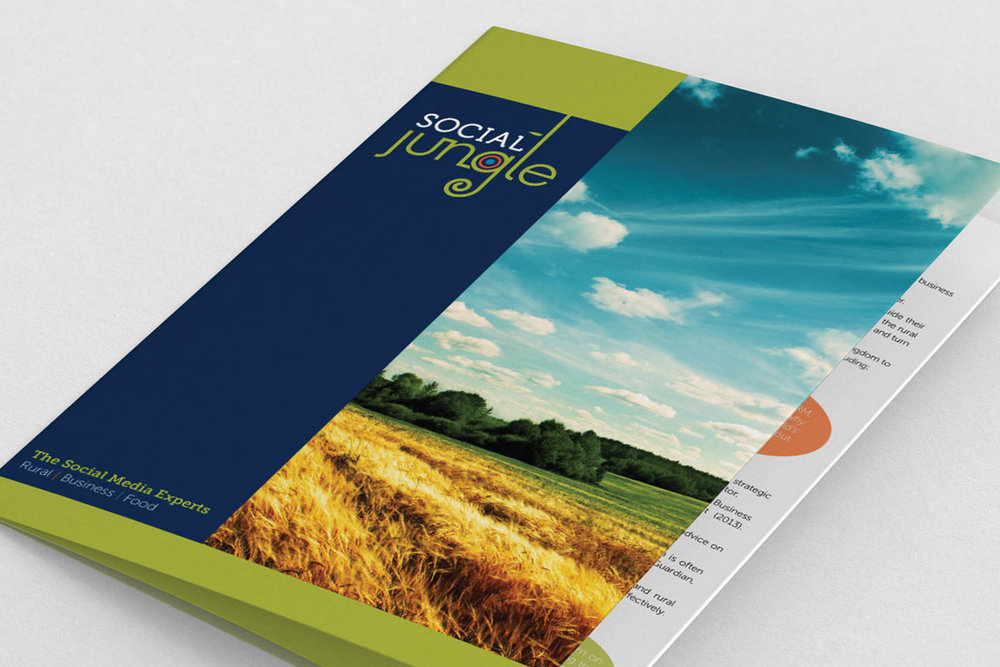 Social Jungle marketing collateral and website design