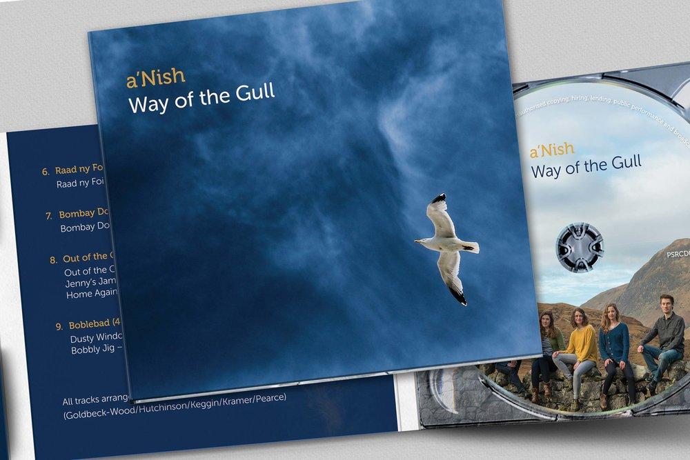 aNish album cover design