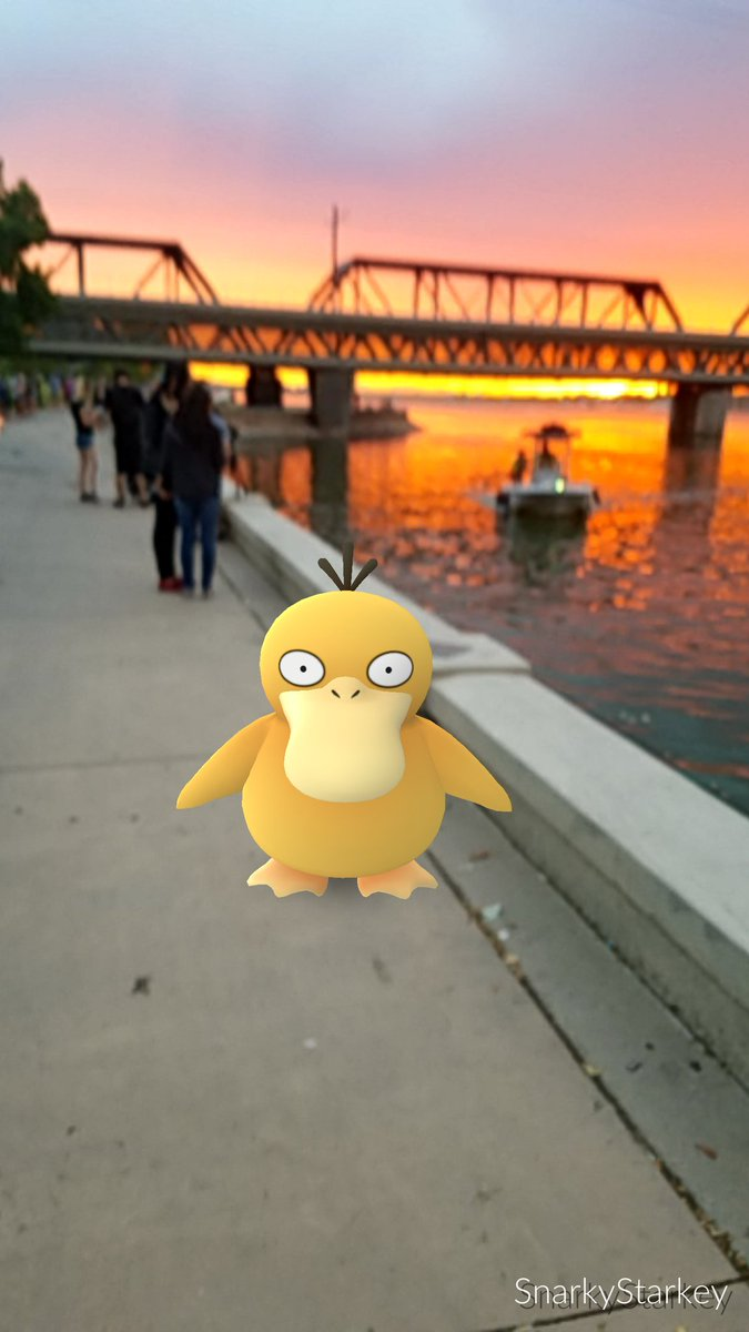 So beautiful: a Water-pokemon in Phoenix! Oh, I guess the sunset was nice too...
