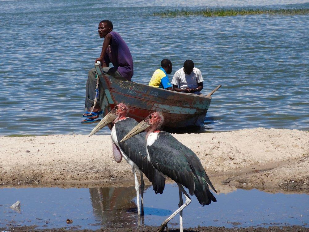 Voyage-sur-mesure-afrique (5).jpg