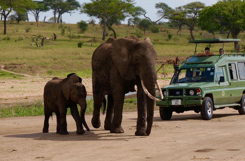 Voyage-sur-mesure-afrique (7).jpg