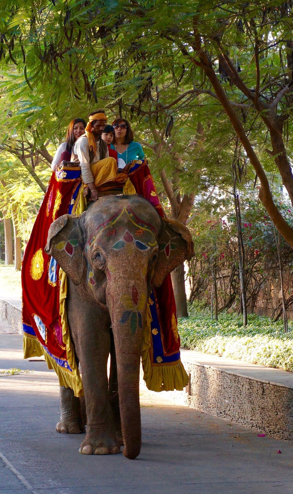 Voyages-de-luxes-asie-Udaipur.jpg