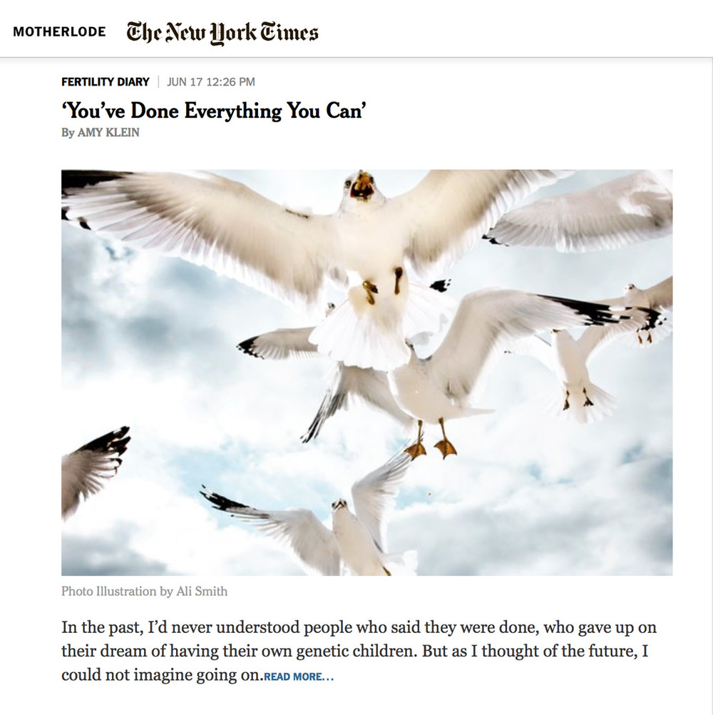 Tears_Motherlode_Seagulls.jpg