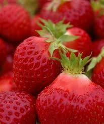 strawberry hood.jpg
