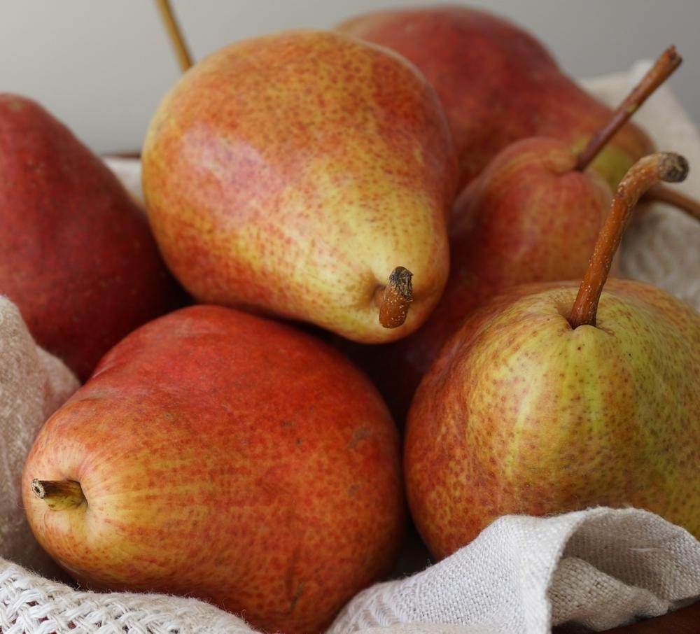 pears-forelle.jpg