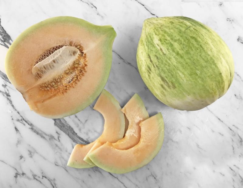 Cranshaw Melon.jpg
