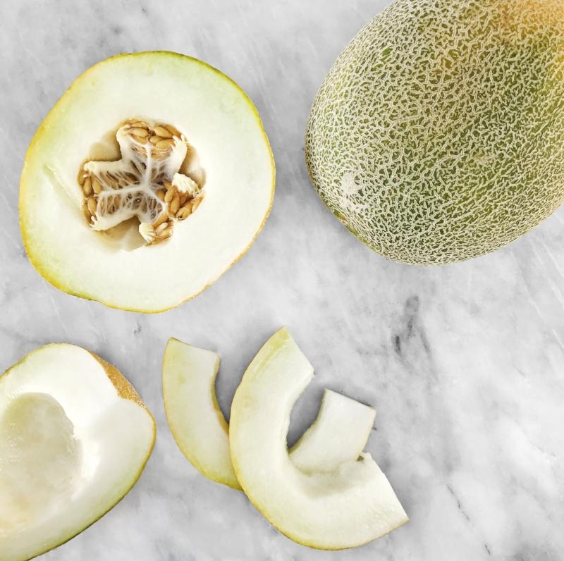 Galia Melons_stylized.jpg