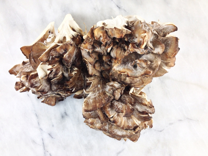 Hen of the Woods.jpg