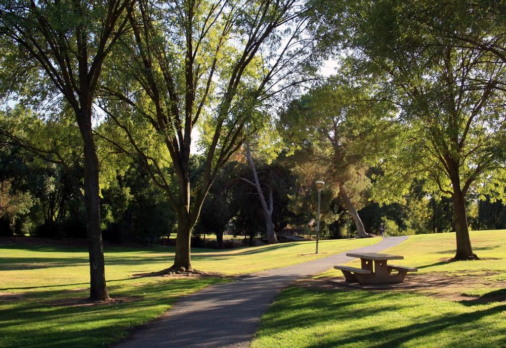 Rahilly Park 3