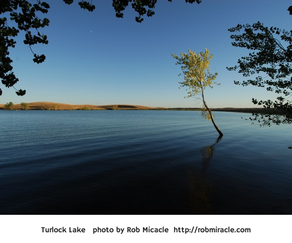 Turlock Lake Photo from