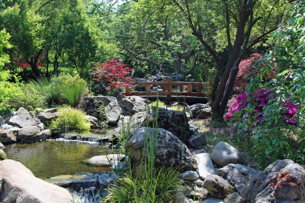 Shinzen Japanese Garden Merced County Events