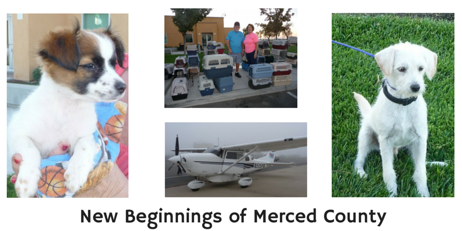 New Beginnings of Merced County
