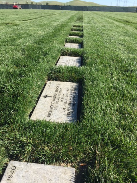 San Joaquin Valley National Cemetery, Santa Nella, CA.  Photo by Steve Newvine