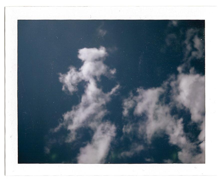 A poodle in the sky, circa 2006. (Polaroid Land Camera)
