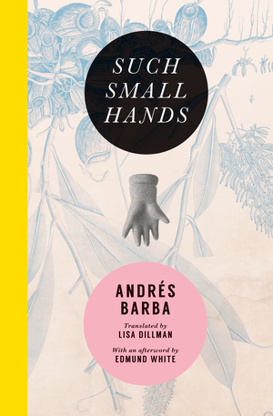 Image result for Andrés Barba, Such Small Hands,