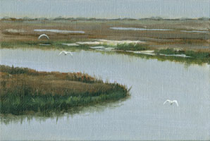 s._carolina_marsh_with_egrets.jpg