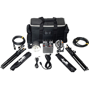 Dynalite Roadmax 800 Watt Lighting Kit Includes: 800 watt power pack, 2 strobes, 2 stands, 2 umbrellas, pocket wizard and carrying case. Daily Rental Rate $35.00 Weekly Rental Rate $140.00