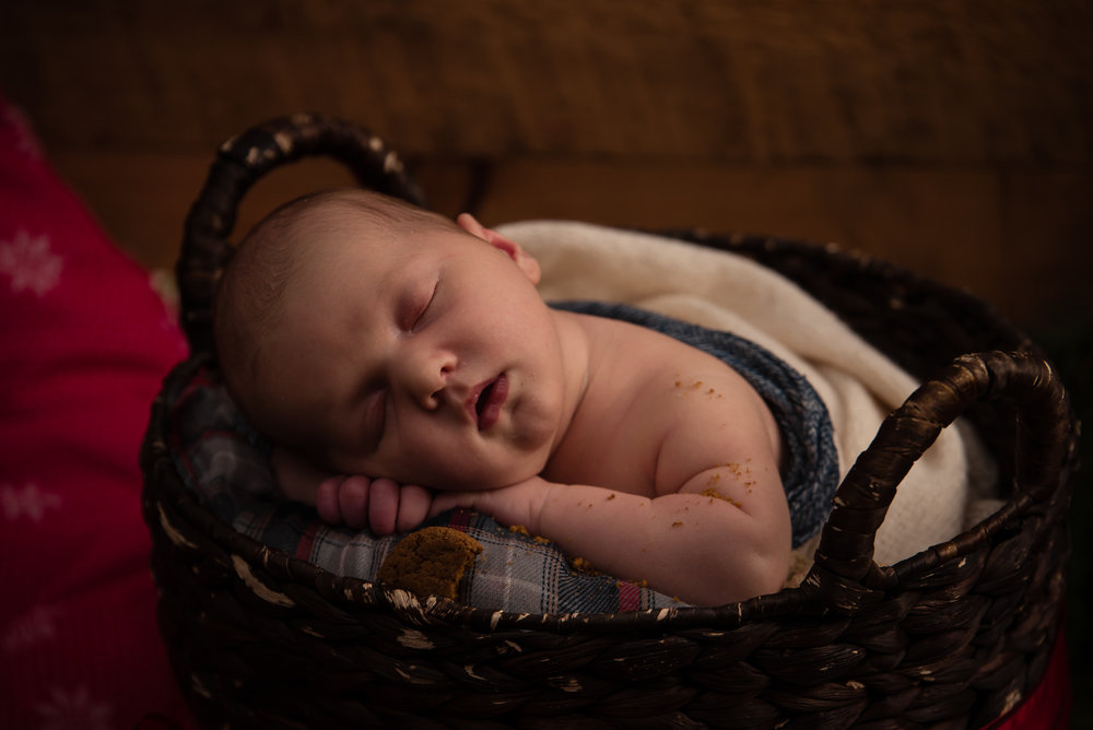 244Naomi Lucienne Photography - Newborn - 171113.jpg