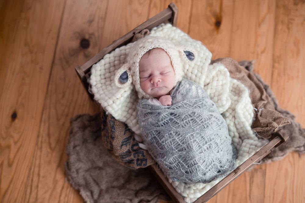180209Naomi Lucienne Photography - Newborn - 180209-7.jpg