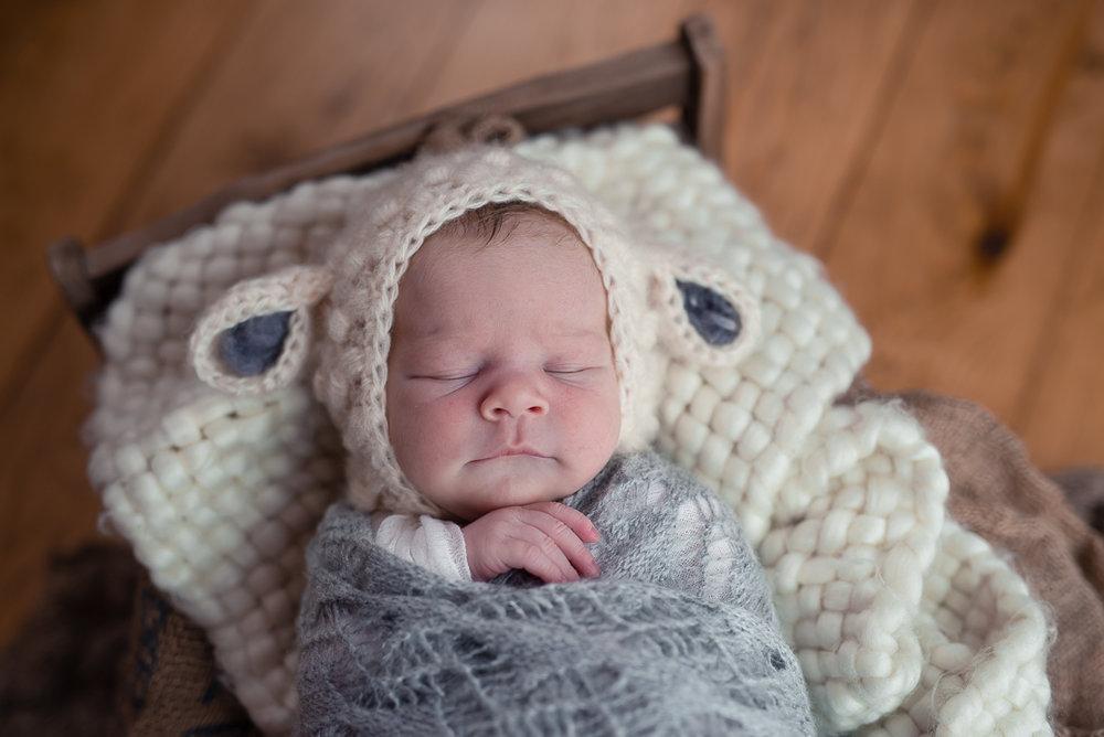 180209Naomi Lucienne Photography - Newborn - 180209-8.jpg