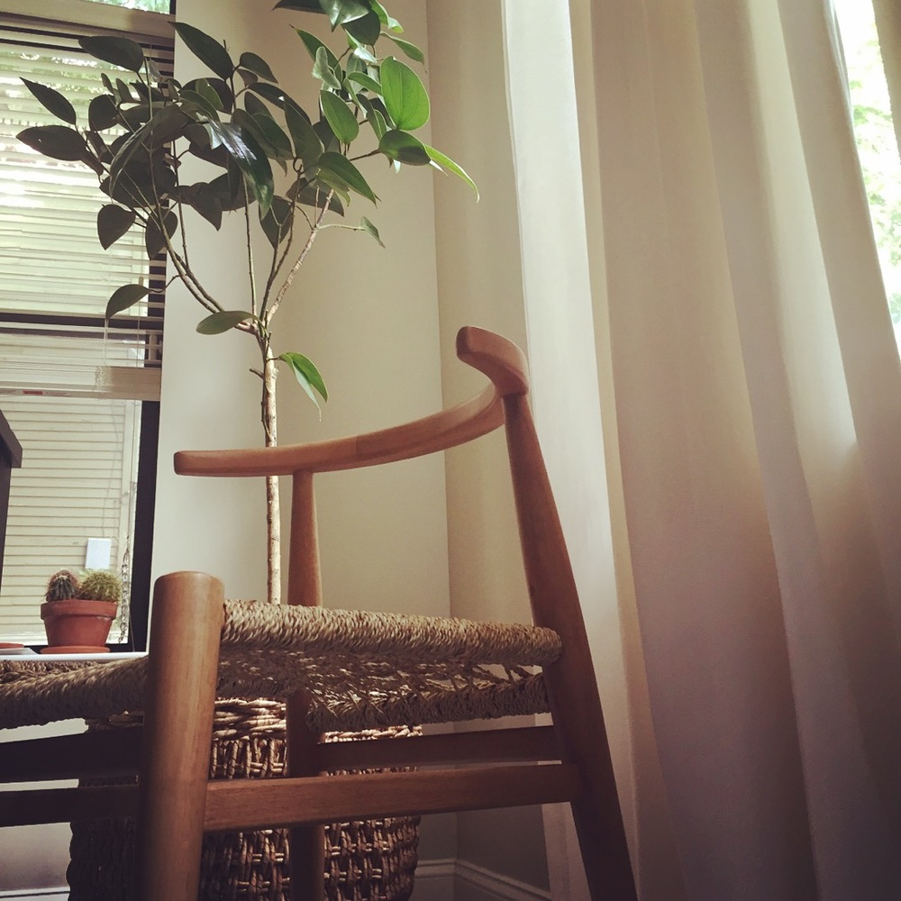 On Friday, Our New Dining Room Chairs (pictured Above) Arrived And I  Absolutely Am In Love With Them! I Went With The John Vogel For West Elm  Chair, ...