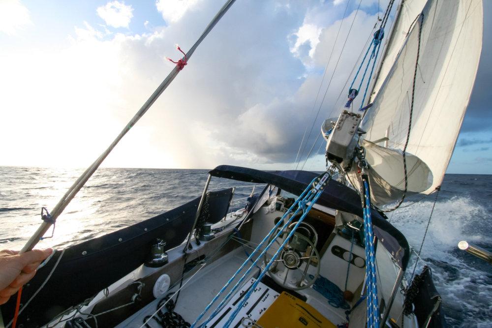 swell_sailing_autopilot-web.jpg