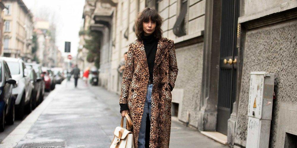 leopard7.jpg