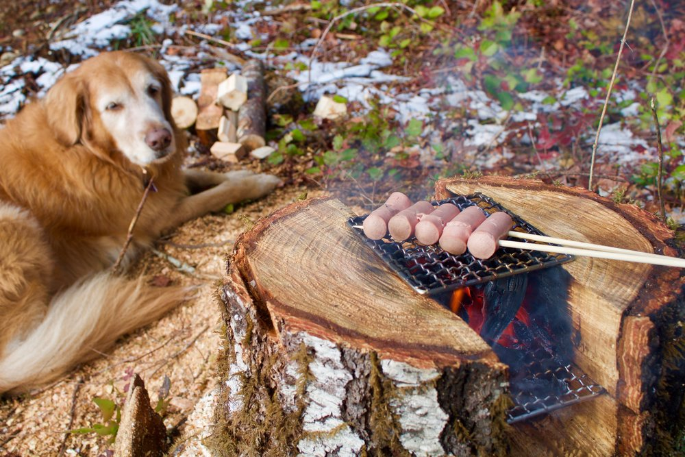 Stump Stove with Toby and meats.jpg
