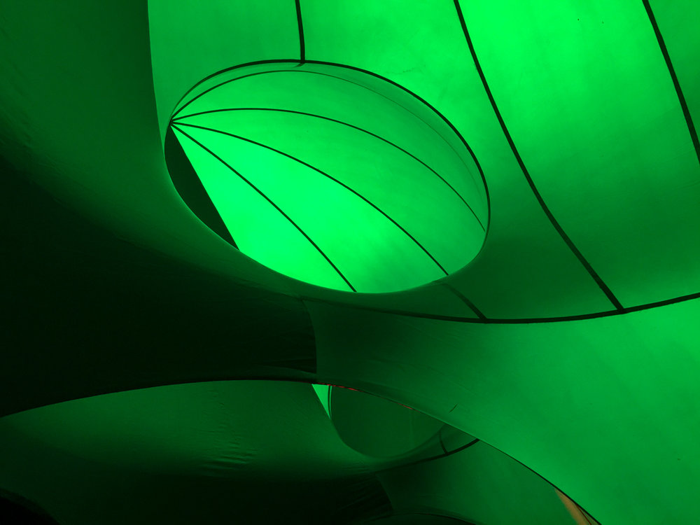 Arboria, 2015 @ Aotea Square