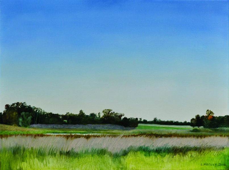 "'Wetland in the Evening'; Oil on canvas; 18""x24""; Lynne Whitney"