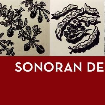 Sonoran-Desert-Class