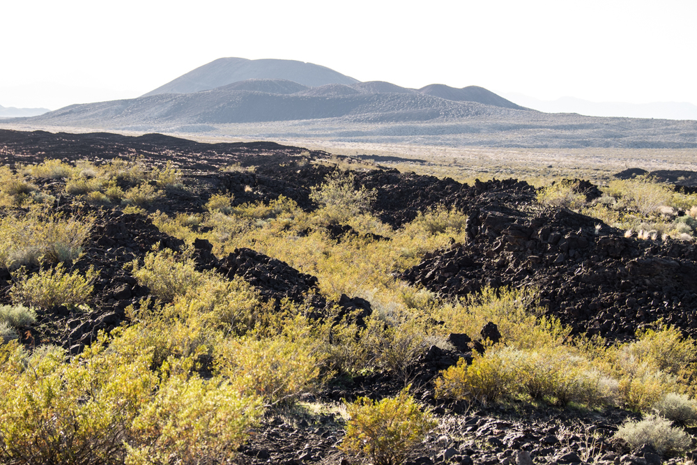 Fields of lava rock, in the middle of the desert.