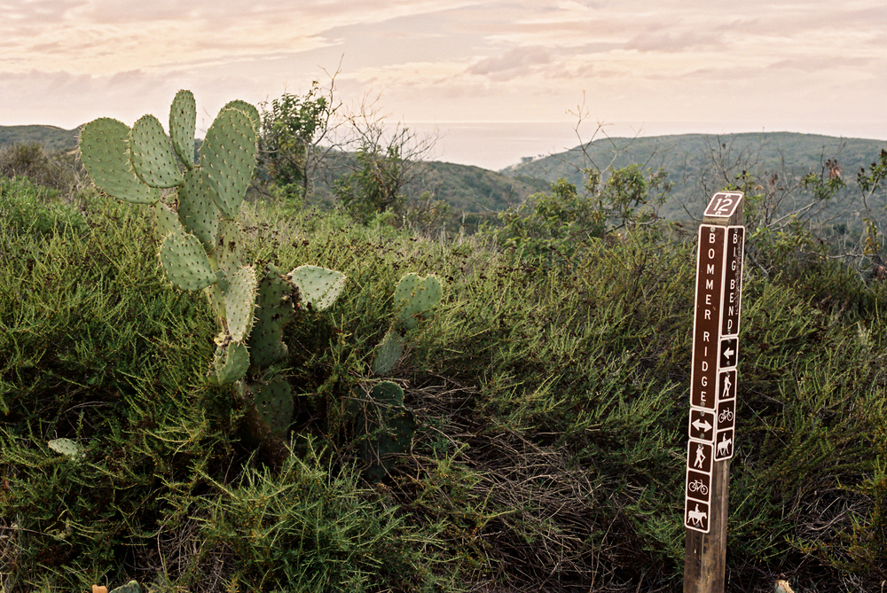 Cacti mark the junction of Bommer and Big Bend. And long distance views of a beautiful ocean!